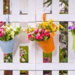 Jardin : comment décorer les clôtures et grillages ?