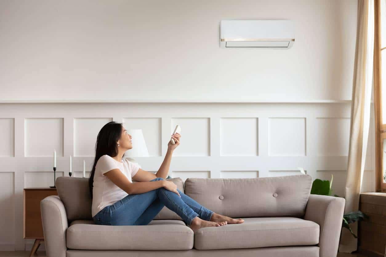 climatiseur anti pollution de l'air intérieur
